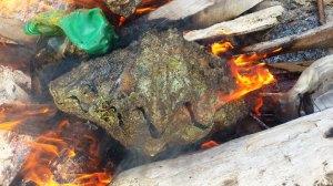 Kima dibakar agar cangkangnya terbuka