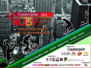 Poster Counterpain IIUSF 2014